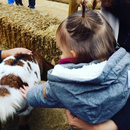 Nena dd'esquena tocant una cabreta a la granja Can Gel. Al fons, bales de palla