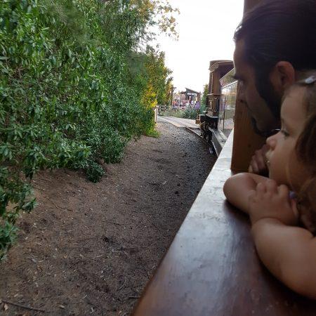 #paredelacriatura i petita A al tren de vapor de PortAventura