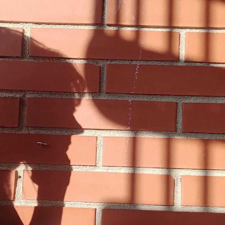 L'ombra del meu perfil sobre mur de totxo vermell. Es veu l'ombra de l'escala de caragol.